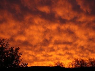 Changements climatiques et température