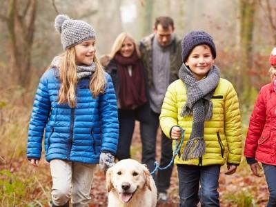 Organisez une activité de plein air en famille