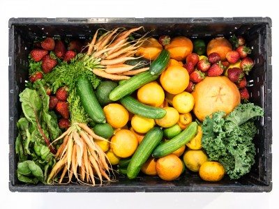 Antioxidants and Organic Produce