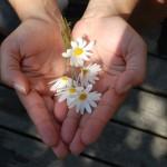Faites un don à un organisme qui vous tient à coeur