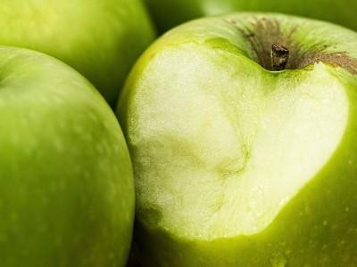 OGM et faim dans le monde