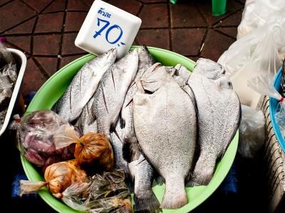 Espèces commerciales de poissons