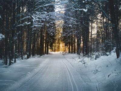 Prendre une marche dans la neige